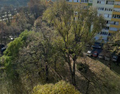One- bedroom Flat Pillgó Park View